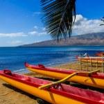 Постер, плакат: Hawaiian Canoes