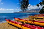 Hawaiian Canoes — Stock Photo