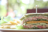 Tuna sandwich on wood background — Stockfoto