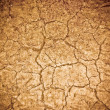 Dry soil texture — Stock Photo #30073697