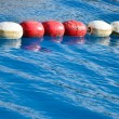 Swimming pool lanes in competition pool — Stock Photo #30074319