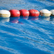 Swimming pool lanes in competition pool — Stock Photo