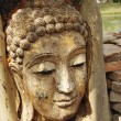 Ancient Buddhism head in root of banyan tree in Thailand — Stock Photo