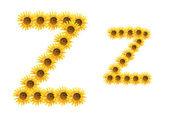 Font flower Z — Stock Photo