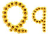 Font flower Q — Stock Photo