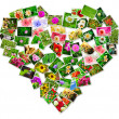 Abstract photo of love concept putting together heart shape — Stock Photo #37673335