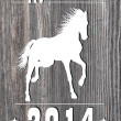 2014 Horse Year — Stock Photo