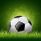 Soccer ball on green grass background — Stock Vector