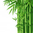 Royalty-Free Stock : Bamboo
