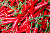Chili red peppers — Stock Photo