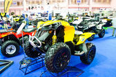 The Can-Am RENEGADE 1000 ATV — 图库照片