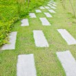 Stock Photo: Pathway in park.