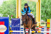 MaxWin Show Jumping League & Horse Guard 2014 — Stockfoto