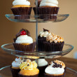 Cupcakes Party Tray — Stock Photo #14093471