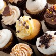 Assorted Gourmet Cupcakes — Stock Photo #14597863
