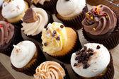 Cupcakes surtidos gourmet — Foto de Stock