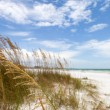 Siesta Key Beach Sarasota Florida — Stock Photo #17615119