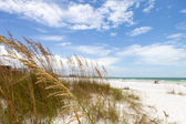 Siesta Key Beach Sarasota Florida — Stock Photo