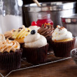 Variety of Gourmet Cupcakes — Stock Photo #18477621