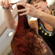 Foto de Stock  : Haircut at Salon