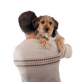 Man Holding a Borkie Dog — Stock Photo