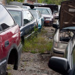 Cars in the Junk Yard — Stock Photo