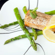 Wild Salmon Seafood Dish — Stock Photo