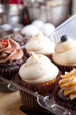 Fresh Cupcakes Iced — Stock Photo