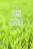 Grass is Always Greener Quote — Stock Photo