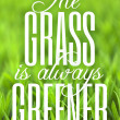 Stock Photo: Grass is Always Greener