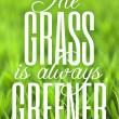 The Grass is Always Greener — Stock Photo