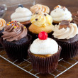 Cupcakes Iced on Cooling Rack — Stock Photo