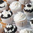 Iced Gourmet Cup Cakes — Stock Photo