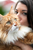 Maine Coon Cat Owner — Stock Photo