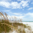 Siesta Key Florida — Stock Photo
