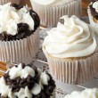 Delicious Gourmet Cupcakes — Stock Photo