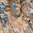 Stock Photo: Rock climber