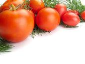 Fresh tomatoes on white background — Zdjęcie stockowe