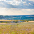 Steppe. Landscape. — Stock Photo #14282643