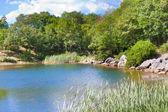 Kırım'da göl manzarasına yaz — Stok fotoğraf