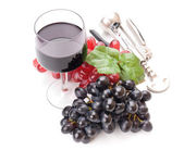 A glass of wonderful and delicious red semisweet wine — Стоковое фото