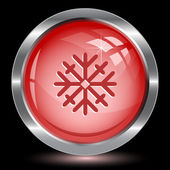 Snowflake. Internet button — Stock Vector
