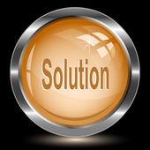 Solution. Internet button. Vector illustration. — Stock Vector