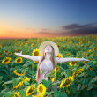 Sunflower sunrise — Stock Photo