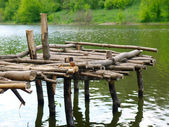 Old wooden pier — Stock Photo