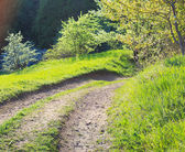 Landweg — Stockfoto
