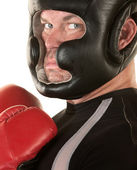 Tough Boxer Staring — Stock Photo