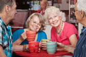 Smiling Senior Ladies — Stock Photo