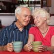 Cute Senior Couple in Love — Stock Photo