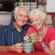 Happy Caucasian Elderly Couple — Stock Photo